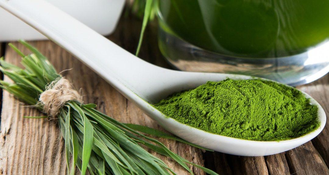 Alga Spriulina – Cos'è e quali benefici regala alla pelle?
